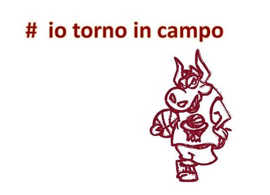 # IO TORNO IN CAMPO